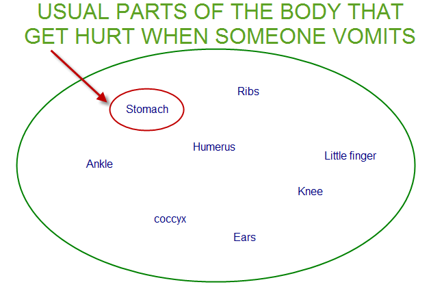 Venn diagram showing the STOMACH.